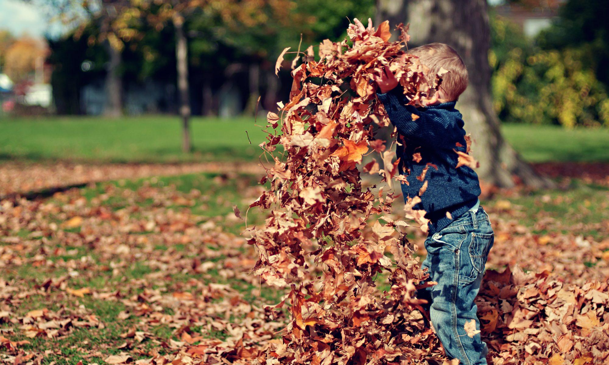 Kind spielt mit Laub