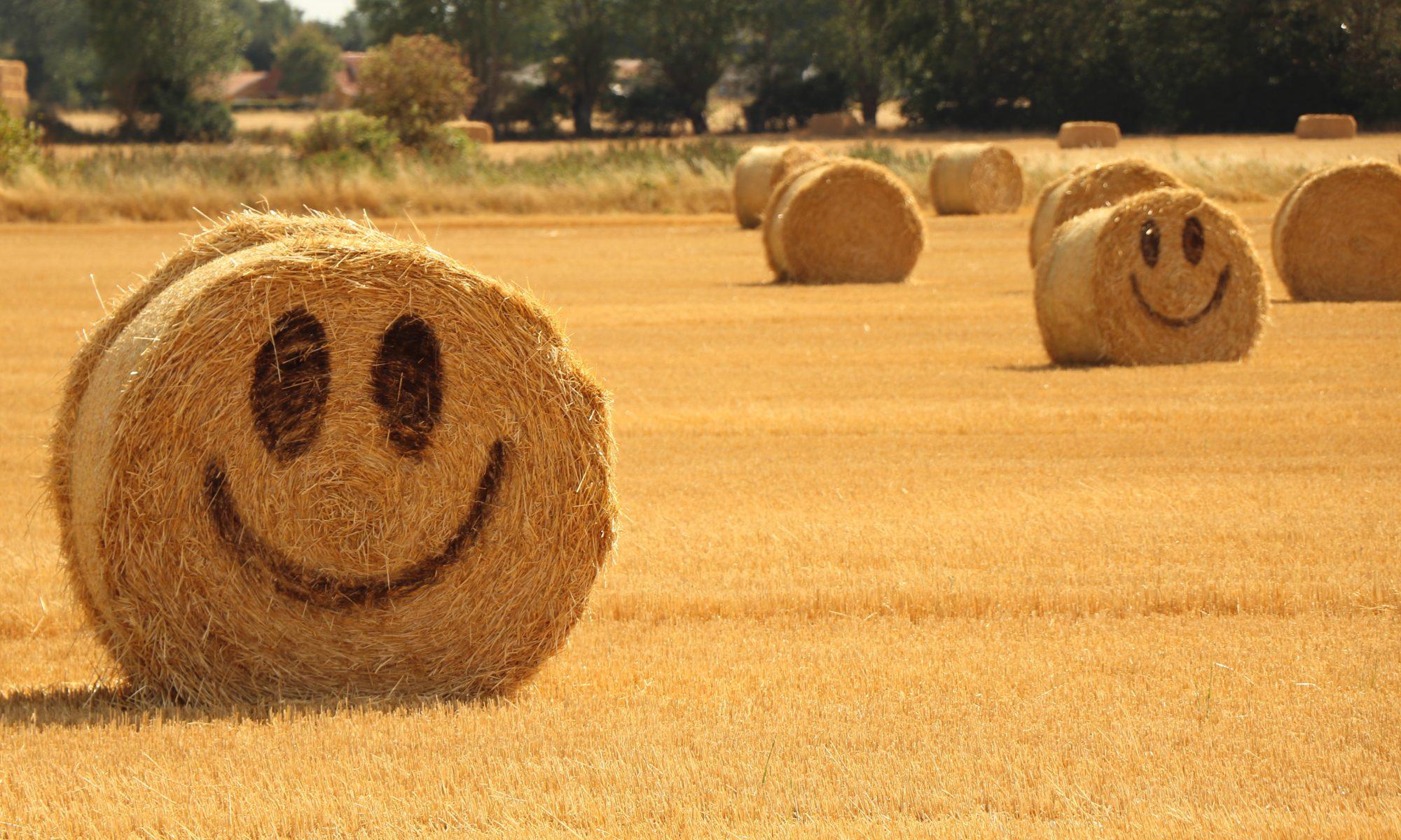 Strohballen Smiley